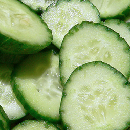 Cucumber Extract - Cucumis Sativus