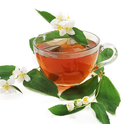 Green Tea Extract - Camellia Sinensis